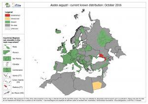The map shows the current known distribution of Aedes aegypti in Europe at 'regional' administrative level (NUTS3). It is provided by the ECDC and is based only on confirmed data (published and unpublished) provided by experts from the respective countries as part of the VectorNet project.