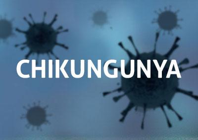icon Chikungunya